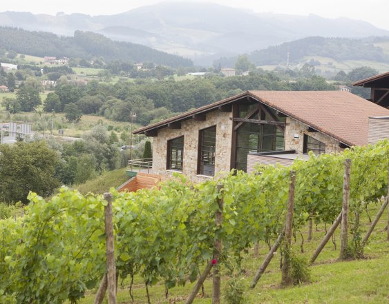 Basque food and wine experience
